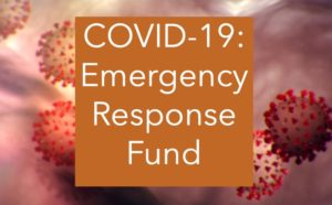 COVID-19 Emergency Response Fund | First Nations Development Institute