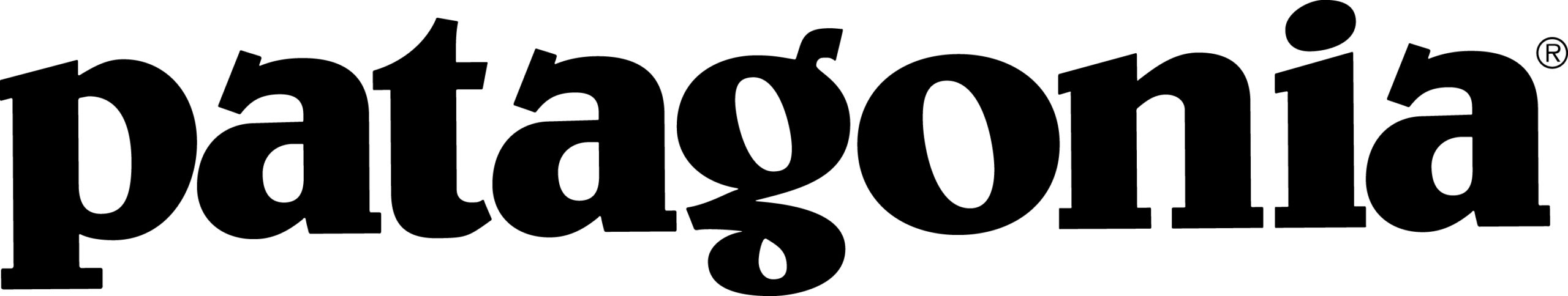 Patagonia word high res